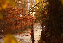 Fall, Fall, Fall! / by Melissa Lambert
