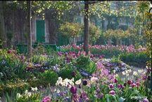 gardens to die for! / by Ann Richardson-Newton