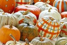 Holidays & Seasons - Fall Decorating / by Michelle Johnson Carr