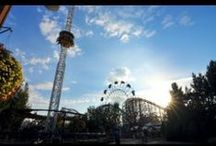 Silverwood Stories / The behind the scenes of what makes Silverwood the best park in the world! / by Silverwood Theme Park