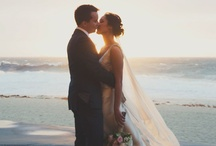 wedding / by Marissa Pacheco