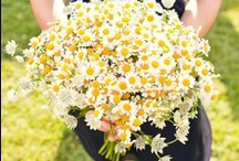 Wedding Bouquets / Bridal bouquets made form eco-friendly flowers. Green wedding inspiration!  / by Green Bride Guide