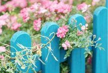 Gardens & Flowers / by Luulla Fashion