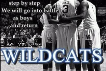 GO CATS!!!!!!!!!!! / by Kathye King