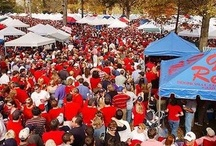 Hotty Toddy / Everything Ole Miss, Mississippi and The Grove / by Julie Ward