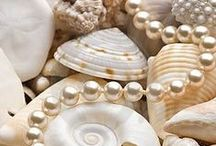 Coloremitry / Shades of Nude / Shell / Champagne / Taupe / by The Charmed Hour