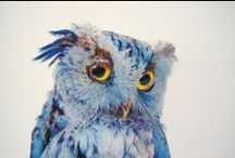 Art and Craft / by Lisa Horkin