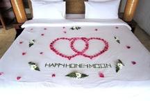 MY DREAM HONEYMOON CAME TRUE / My honeymoon with the man of my dreams. :D Paradise Koh Yao Thailand & Singapore!  Honeymoon  VLOG #1: http://youtu.be/LbBs3IPj2Lg?hd=1 Honeymoon VLOG #2: http://youtu.be/bw8KpX1VKiY?hd=1 / by April Athena7