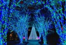 Feeling Blue / by Lisa Deere