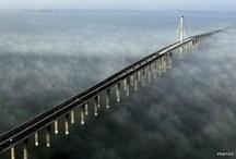 bridges... / by Nuno Silva