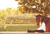 Horses are a Girl's Best Friend / by Elizabeth Kruse