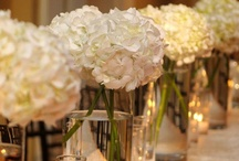 Flowers & Tablescapes  / by Madge S