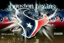 Houston Texans / by Lisa Darras