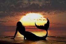 mermaids / by Renee Bradford