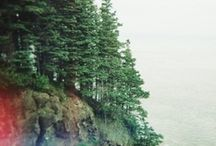 mountain heart / cabin / by jenny moss