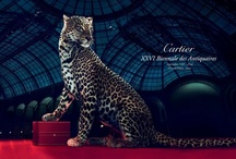 XXVIth Biennale des Antiquaires - Collection / by Cartier