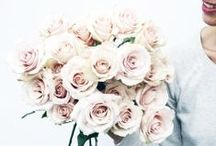 FLOWERS / by Catha