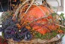 Celebrate Autumn! / by Kathy Robbins-Wise