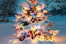 Christmas  / by Carrie Zmyslo