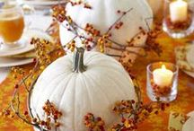 Fall and Halloween / Home decor ideas, treats, etc. for the best time of the year! / by Lindsey Evans