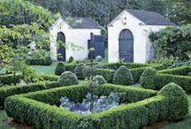 garden / by Elizabeth de Montfort Walker