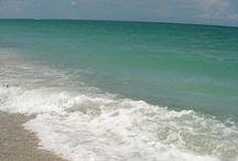 Christmas Holiday | Florida 2013 / by Seeking {Sense} Art Journeys