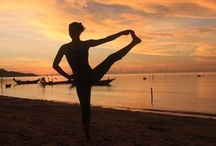 Wellness Retreats / Experience Wellness / by Samahita Retreat
