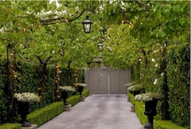 project: driveway / inspiration for a new entry / by Mary Harding Talbot