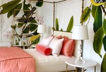 Guest Bedrooms... / by Maegan Tintari | ...love Maegan
