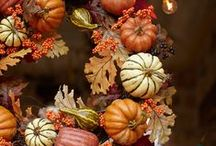 Camille's Fall Favorites / inspiration for throwing the perfect fall gathering / by Nantucket Home