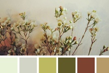 Color Scheming / by Christin