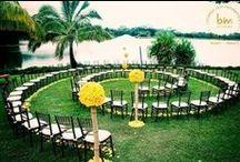 Creative Wedding Ideas / by Tim Sudall