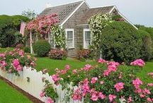 A Trip Down Rose Lane...The Rose Cottage / As with all of my boards...feel free to pin as much as you like! / by Avis Blowers