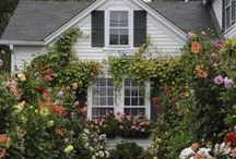 A Trip Down Lover's Lane...Lover's Cottage. / A warm place to be, with warm decor and warm people.  As with all of my boards...feel free to pin as much as you like ! / by Avis Blowers