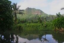 Raiatea / by Tahiti.com
