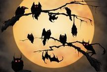 Everything I love about Halloween / by Sarah Nesvold