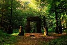 Portals and Passageways / Let your imagination soar.....what is beyond that magical mysterious space?  Shall we find out now..... or later? / by Diane G H C