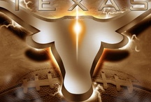 TEXAS LONGHORNS! HOOK 'EM HORNS / by Pat Magallanes-Chrisman (Frankie Mags)