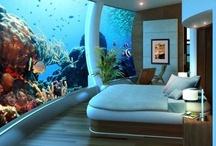 Spectacular Hotel Views / by TripAdvisor