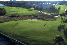 GOLF Travel Promotions, Packages & Incentives  / by Whitney Noonan