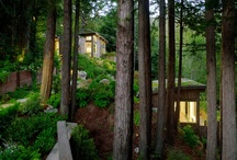 Mill Valley Cabins / by Feldman Architecture