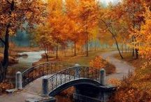 All About Fall/Autumn... / by Melinda Ingle