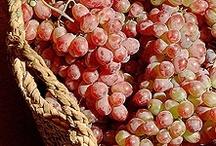 Fruits & Veggies  / by G F