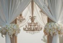 Wedding / by Stali Allport