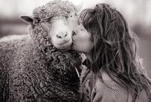 Farm*hers / Farm strong. Women smart. / by Jenny | Sheepy Hollow