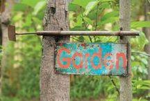 Garden / Gardening plans, ideas, wants! / by Jenny | Sheepy Hollow