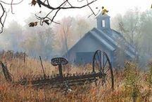 Autumn / by Marlo Wyant