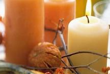 Thanksgiving  / by Brenda Harmon