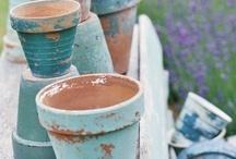 Garden Ideas / by Brenda Harmon