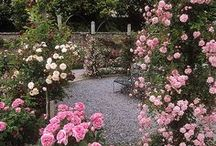 Garden Glory / by Towne Realty Group